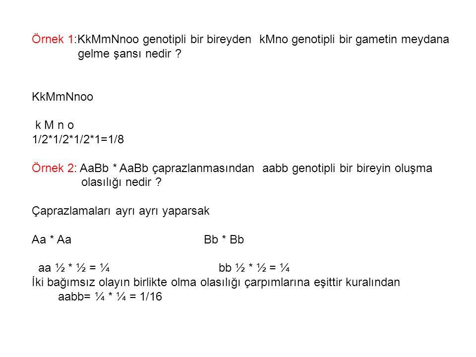 Örnek 1:KkMmNnoo genotipli bir bireyden kMno genotipli bir gametin meydana gelme şansı nedir ? KkMmNnoo k M n o 1/2*1/2*1/2*1=1/8 Örnek 2: AaBb * AaBb