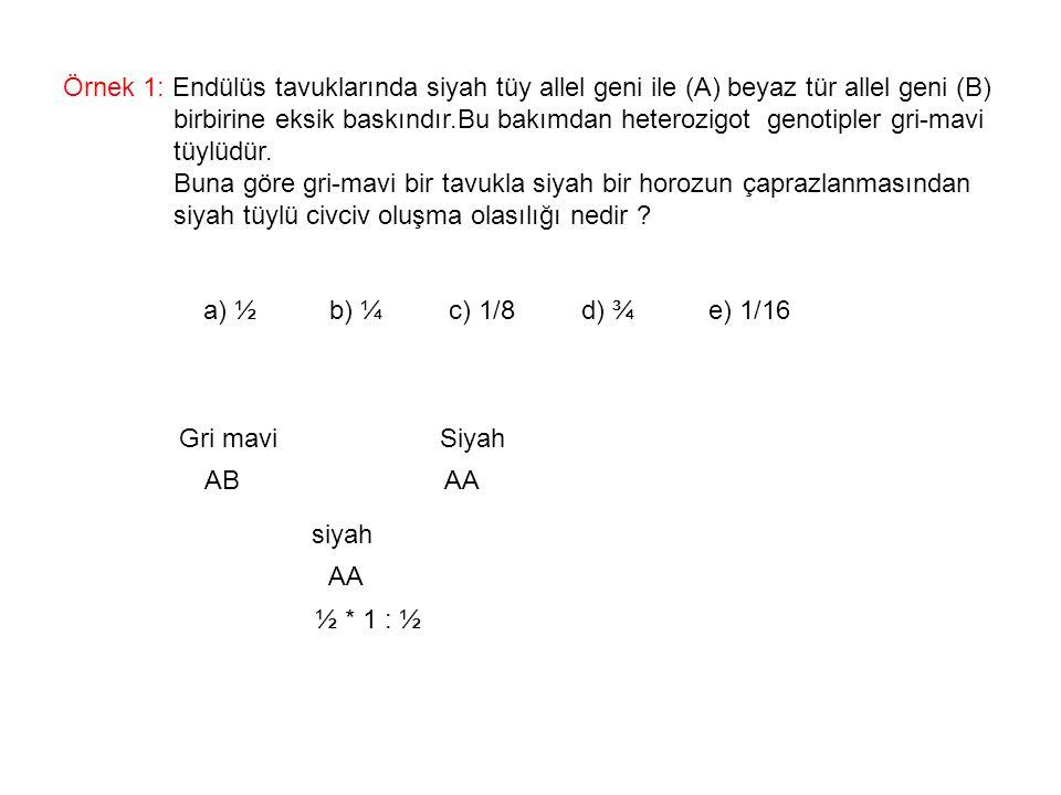 Örnek 1: Endülüs tavuklarında siyah tüy allel geni ile (A) beyaz tür allel geni (B) birbirine eksik baskındır.Bu bakımdan heterozigot genotipler gri-m