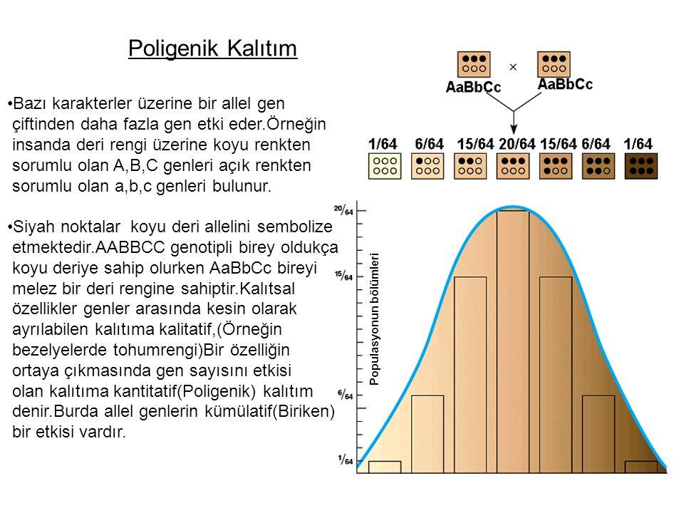 Poligenik Kalıtım Bazı karakterler üzerine bir allel gen çiftinden daha fazla gen etki eder.Örneğin insanda deri rengi üzerine koyu renkten sorumlu ol