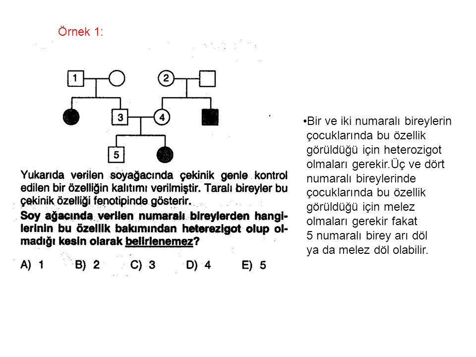 Örnek 1: Bir ve iki numaralı bireylerin çocuklarında bu özellik görüldüğü için heterozigot olmaları gerekir.Üç ve dört numaralı bireylerinde çocukları