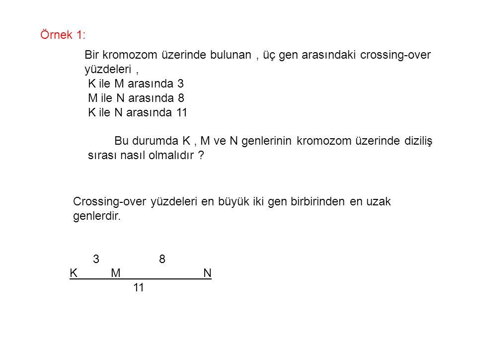 Örnek 1: Bir kromozom üzerinde bulunan, üç gen arasındaki crossing-over yüzdeleri, K ile M arasında 3 M ile N arasında 8 K ile N arasında 11 Bu durumd