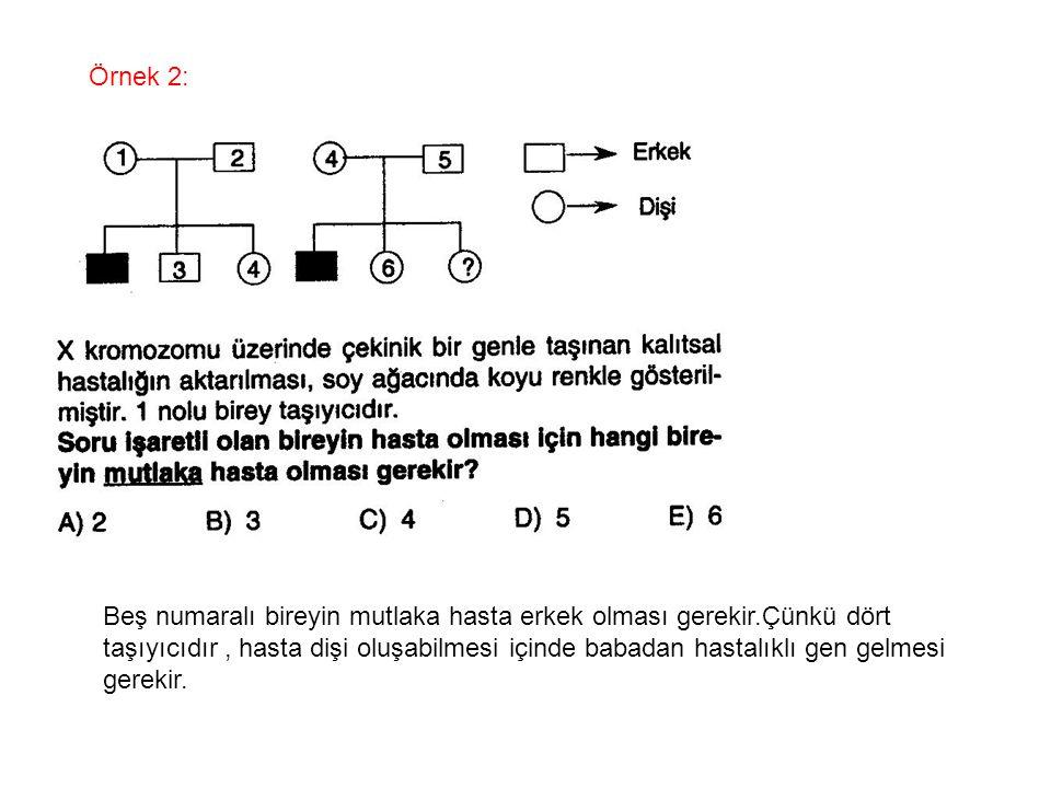 Örnek 2: Beş numaralı bireyin mutlaka hasta erkek olması gerekir.Çünkü dört taşıyıcıdır, hasta dişi oluşabilmesi içinde babadan hastalıklı gen gelmesi