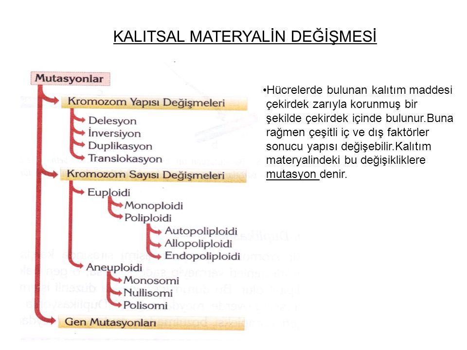 KALITSAL MATERYALİN DEĞİŞMESİ Hücrelerde bulunan kalıtım maddesi çekirdek zarıyla korunmuş bir şekilde çekirdek içinde bulunur.Buna rağmen çeşitli iç