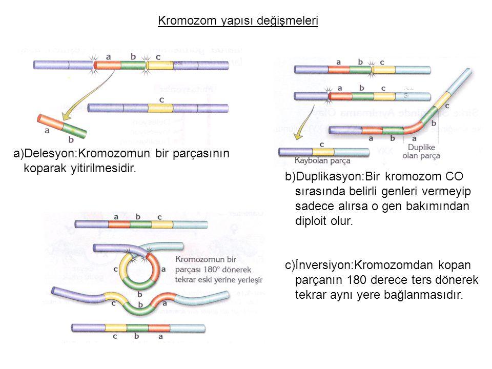 Kromozom yapısı değişmeleri a)Delesyon:Kromozomun bir parçasının koparak yitirilmesidir. b)Duplikasyon:Bir kromozom CO sırasında belirli genleri verme