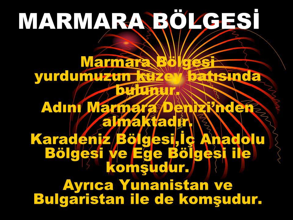 BÖLGEMİZİN İLLERİ İstanbul Kırklareli Edirne Tekirdağ Çanakkale Bursa Balıkesir Yalova İzmit ( Kocaeli) Adapazarı ( Sakarya ) Bilecik