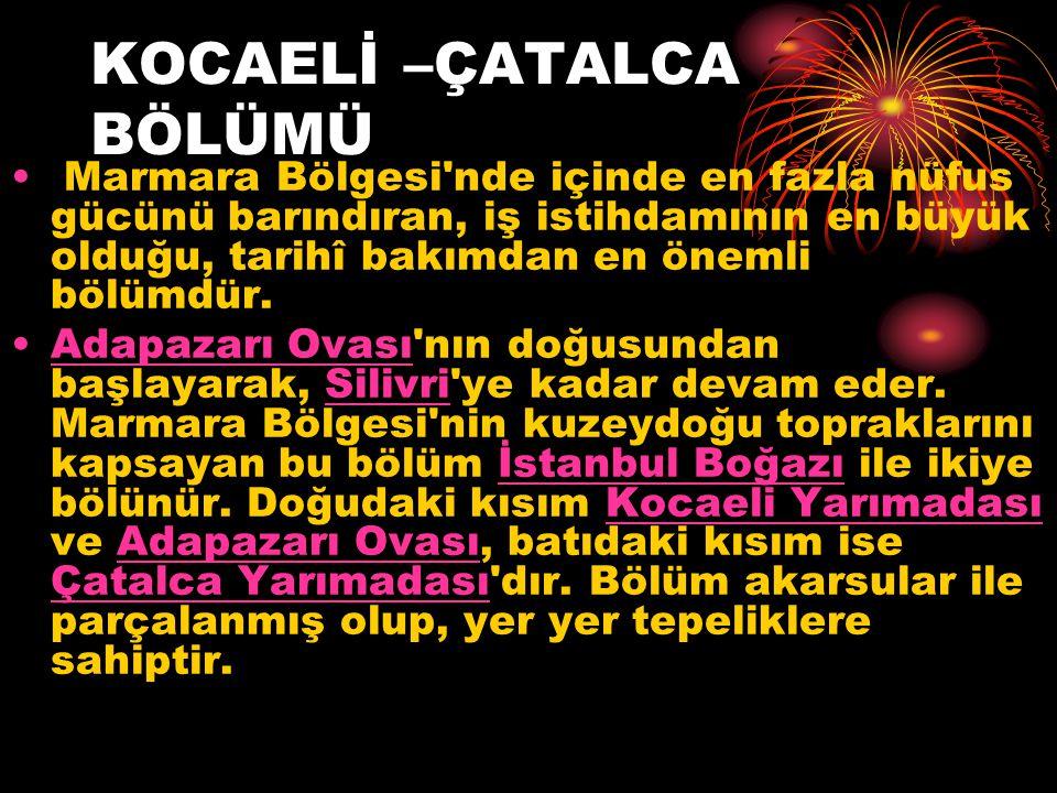 KOCAELİ –ÇATALCA BÖLÜMÜ Marmara Bölgesi nde içinde en fazla nüfus gücünü barındıran, iş istihdamının en büyük olduğu, tarihî bakımdan en önemli bölümdür.
