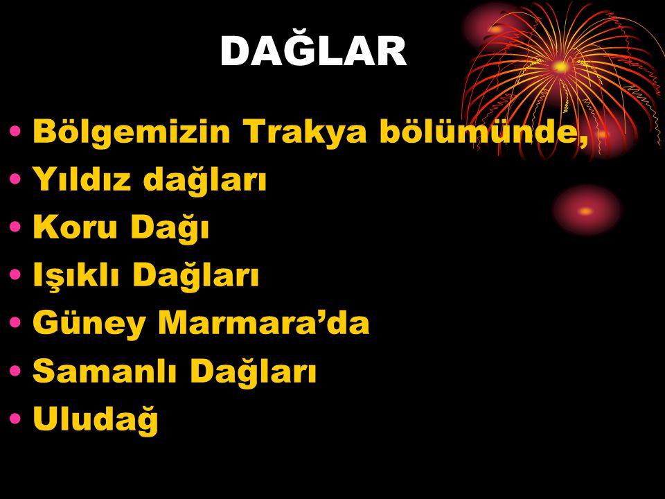 YILDIZ DAĞLARI BÖLÜMÜ yıldız Dağları Bölümü, Marmara Bölgesi nin kuzeybatısını oluşturur.
