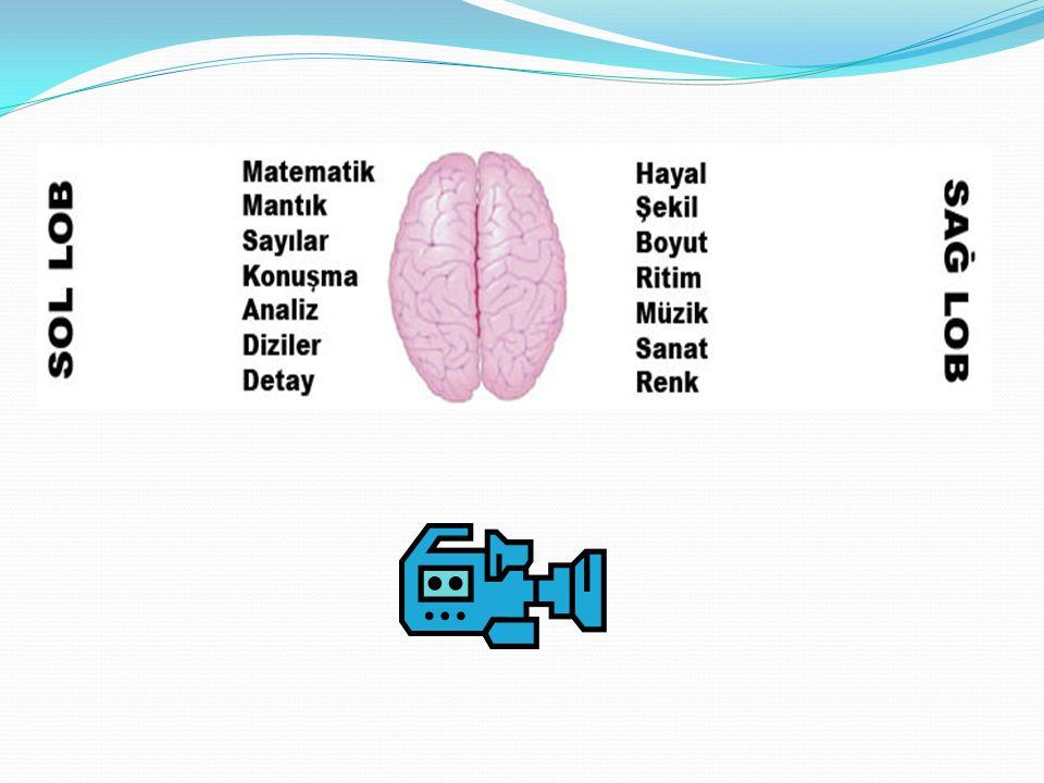 Verilen bu eğitim çocuklarda hızlı bir zihinsel gelişim ve mental aritmetik yeteneği sağlar.