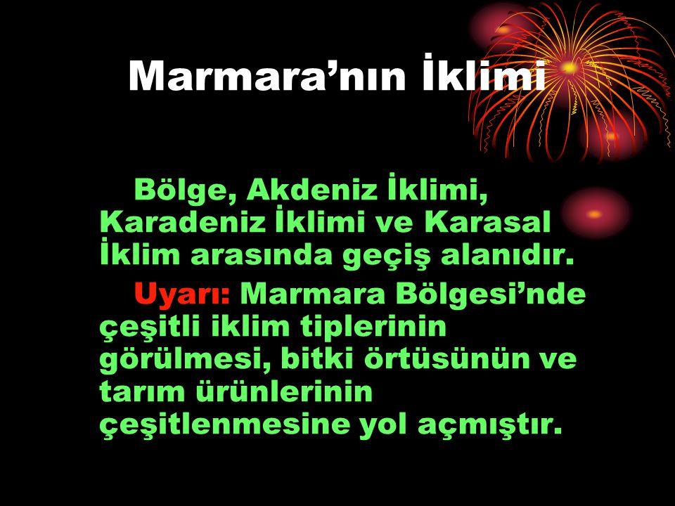 Marmara'nın İklimi Bölge, Akdeniz İklimi, Karadeniz İklimi ve Karasal İklim arasında geçiş alanıdır. Uyarı: Marmara Bölgesi'nde çeşitli iklim tiplerin