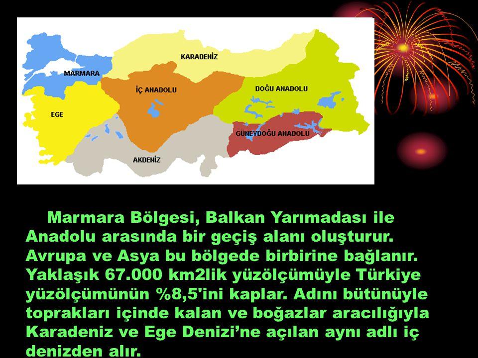 Marmara Bölgesi, Balkan Yarımadası ile Anadolu arasında bir geçiş alanı oluşturur. Avrupa ve Asya bu bölgede birbirine bağlanır. Yaklaşık 67.000 km2li