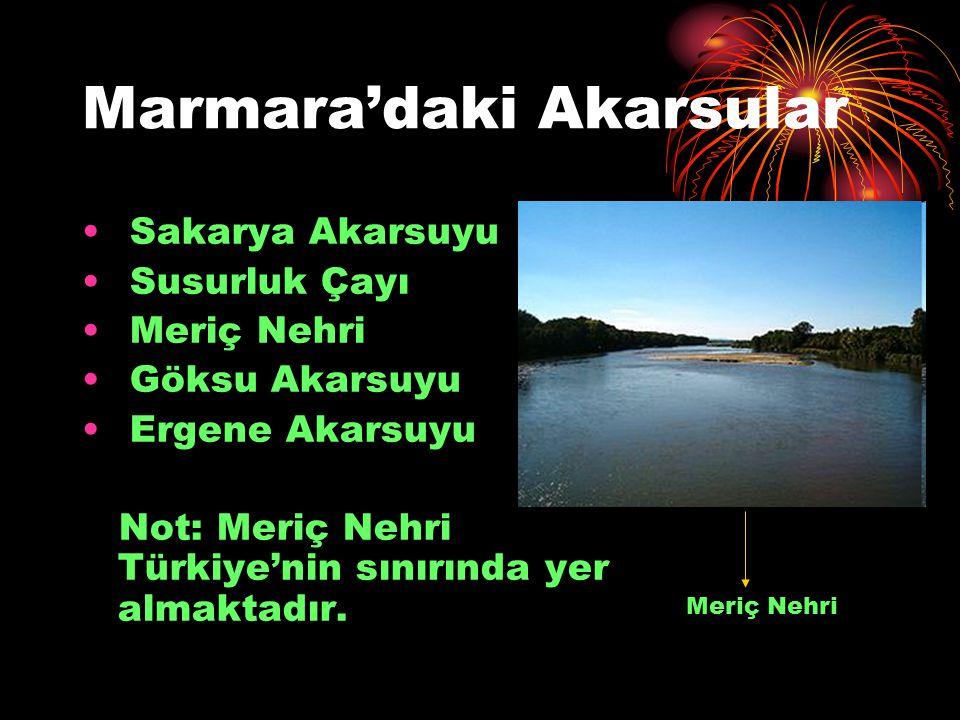 Marmara'daki Akarsular Sakarya Akarsuyu Susurluk Çayı Meriç Nehri Göksu Akarsuyu Ergene Akarsuyu Not: Meriç Nehri Türkiye'nin sınırında yer almaktadır
