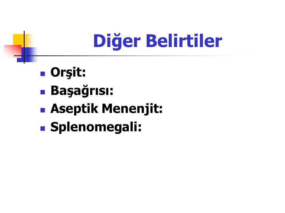 Diğer Belirtiler Orşit: Başağrısı: Aseptik Menenjit: Splenomegali: