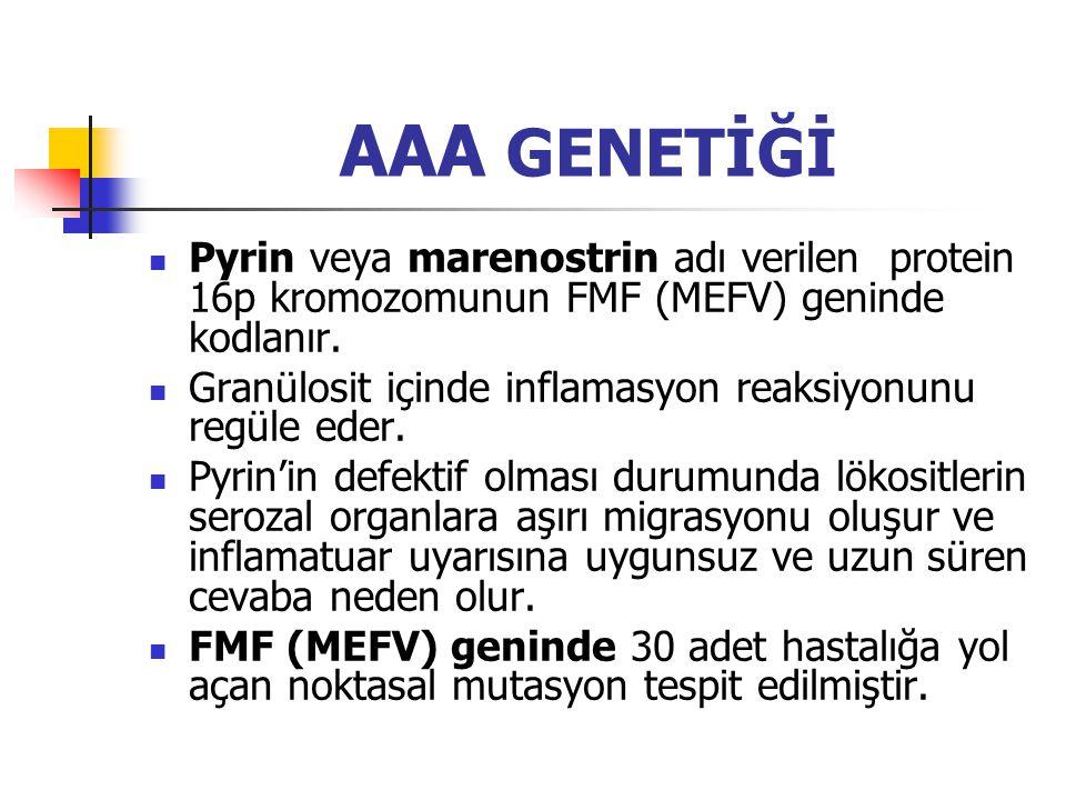 AAA GENETİĞİ Pyrin veya marenostrin adı verilen protein 16p kromozomunun FMF (MEFV) geninde kodlanır. Granülosit içinde inflamasyon reaksiyonunu regül