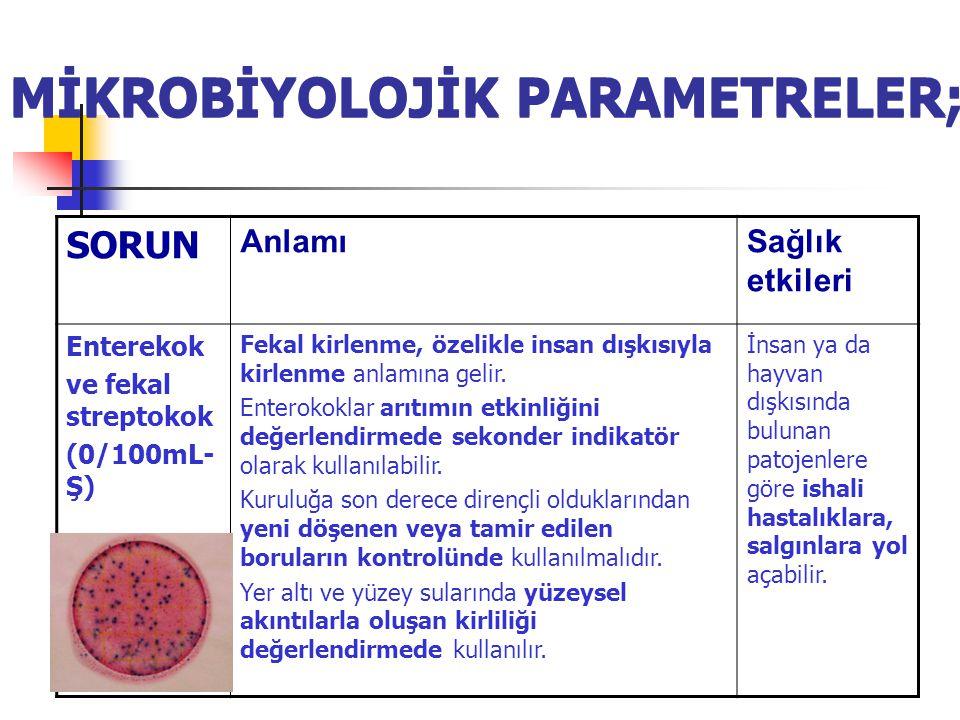 MİKROBİYOLOJİK PARAMETRELER; SORUN AnlamıSağlık etkileri Enterekok ve fekal streptokok (0/100mL- Ş) Fekal kirlenme, özelikle insan dışkısıyla kirlenme anlamına gelir.