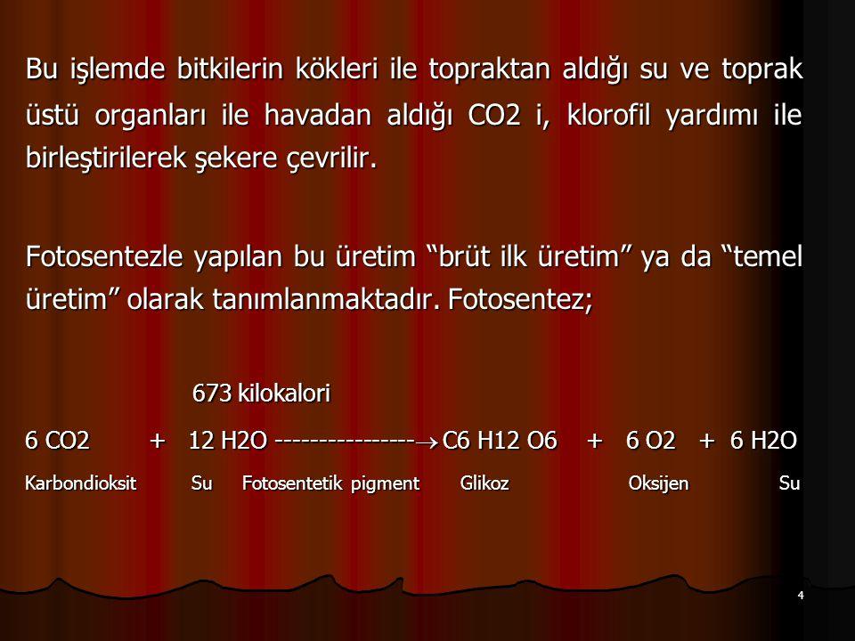 5 Fotosentez sonucu üretilen glikoz, karbondioksit molekülüne, su molekülünden alınan hidrojen atomlarının eklenmesiyle elde edilir.