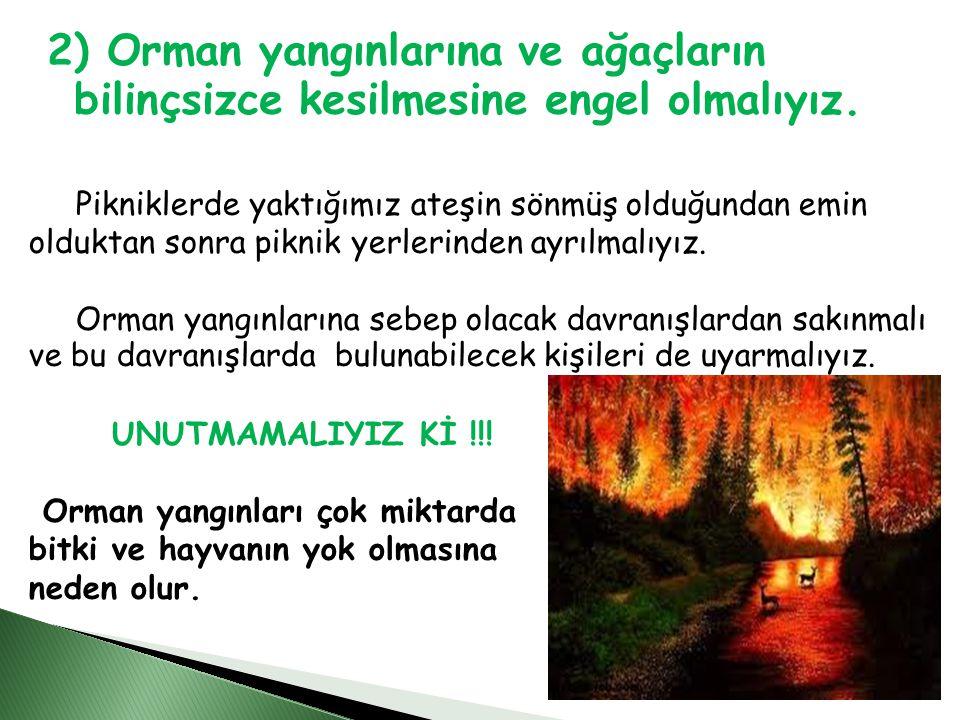 2) Orman yangınlarına ve ağaçların bilinçsizce kesilmesine engel olmalıyız.