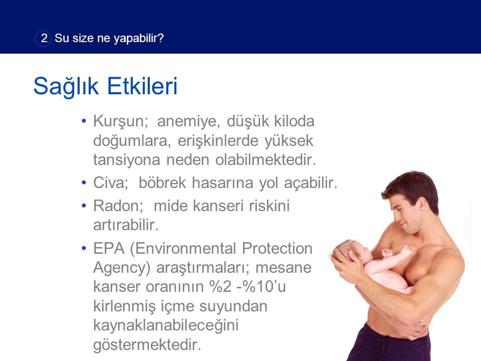 Kurşun; anemiye, düşük kiloda doğumlara, erişkinlerde yüksek tansiyona neden olabilmektedir.