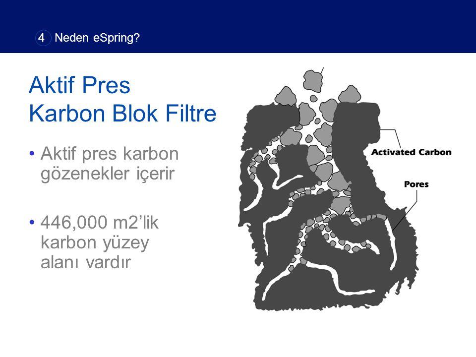 Aktif Pres Karbon Blok Filtre Aktif pres karbon gözenekler içerir 446,000 m2'lik karbon yüzey alanı vardır 4 Neden eSpring?