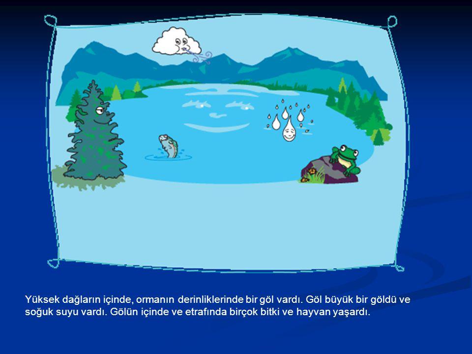 Yüksek dağların içinde, ormanın derinliklerinde bir göl vardı. Göl büyük bir göldü ve soğuk suyu vardı. Gölün içinde ve etrafında birçok bitki ve hayv