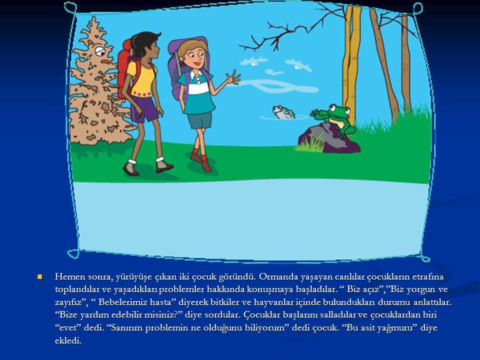 Hemen sonra, yürüyüşe çıkan iki çocuk göründü. Ormanda yaşayan canlılar çocukların etrafına toplandılar ve yaşadıkları problemler hakkında konuşmaya b