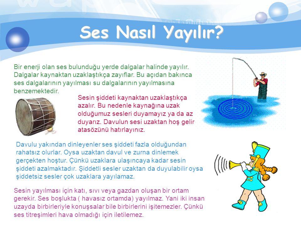 Her sesi duyabilir miyiz? Hayır, insan kulağı her sesi duyamaz. Bir saniyedeki titreşim sayısı 20 ile 20.000 arasındaki sesleri duyabiliriz. Duyabildi