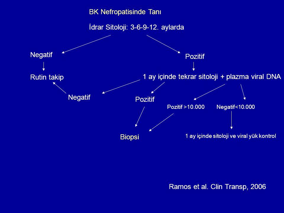 BK Nefropatisinde Tanı İdrar Sitoloji: 3-6-9-12.
