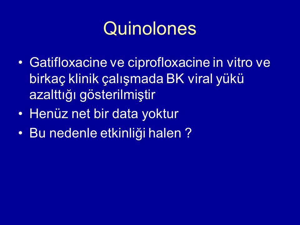 Quinolones Gatifloxacine ve ciprofloxacine in vitro ve birkaç klinik çalışmada BK viral yükü azalttığı gösterilmiştir Henüz net bir data yoktur Bu nedenle etkinliği halen