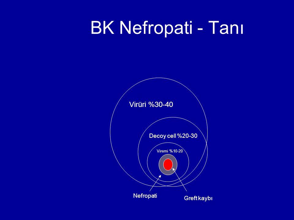BK Nefropati - Tanı Virüri %30-40 Decoy cell %20-30 Viremi %10-20 Nefropati Greft kaybı
