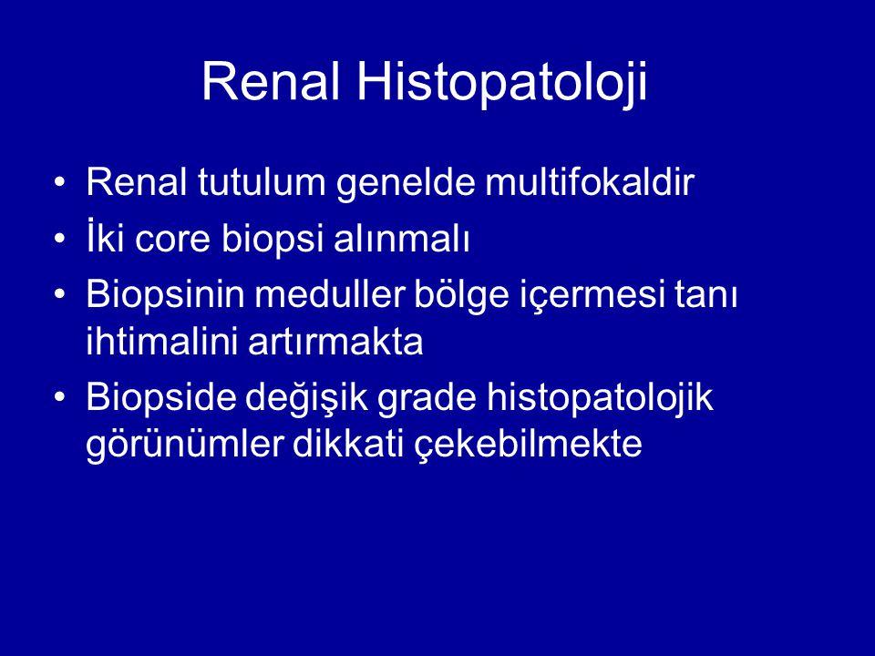 Renal Histopatoloji Renal tutulum genelde multifokaldir İki core biopsi alınmalı Biopsinin meduller bölge içermesi tanı ihtimalini artırmakta Biopside değişik grade histopatolojik görünümler dikkati çekebilmekte