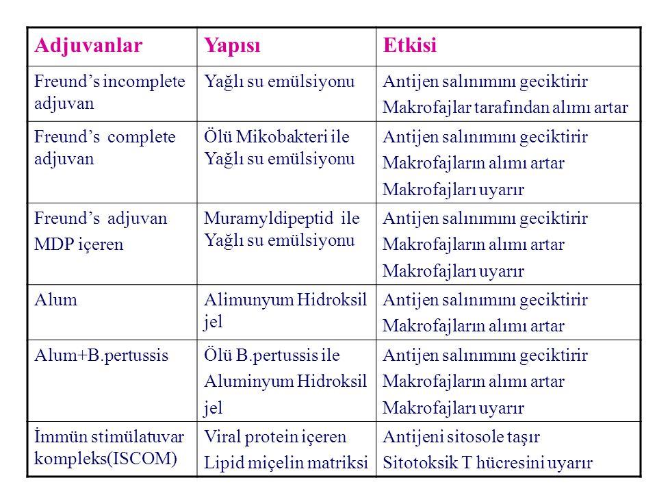 AdjuvanlarYapısıEtkisi Freund's incomplete adjuvan Yağlı su emülsiyonuAntijen salınımını geciktirir Makrofajlar tarafından alımı artar Freund's complete adjuvan Ölü Mikobakteri ile Yağlı su emülsiyonu Antijen salınımını geciktirir Makrofajların alımı artar Makrofajları uyarır Freund's adjuvan MDP içeren Muramyldipeptid ile Yağlı su emülsiyonu Antijen salınımını geciktirir Makrofajların alımı artar Makrofajları uyarır AlumAlimunyum Hidroksil jel Antijen salınımını geciktirir Makrofajların alımı artar Alum+B.pertussisÖlü B.pertussis ile Aluminyum Hidroksil jel Antijen salınımını geciktirir Makrofajların alımı artar Makrofajları uyarır İmmün stimülatuvar kompleks(ISCOM) Viral protein içeren Lipid miçelin matriksi Antijeni sitosole taşır Sitotoksik T hücresini uyarır