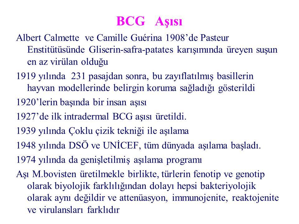 BCG Aşısı Albert Calmette ve Camille Guérina 1908'de Pasteur Enstitütüsünde Gliserin-safra-patates karışımında üreyen suşun en az virülan olduğu 1919 yılında 231 pasajdan sonra, bu zayıflatılmış basillerin hayvan modellerinde belirgin koruma sağladığı gösterildi 1920'lerin başında bir insan aşısı 1927'de ilk intradermal BCG aşısı üretildi.