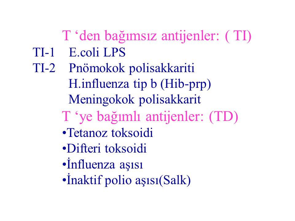 T 'den bağımsız antijenler: ( TI) TI-1 E.coli LPS TI-2 Pnömokok polisakkariti H.influenza tip b (Hib-prp) Meningokok polisakkarit T 'ye bağımlı antijenler: (TD) Tetanoz toksoidi Difteri toksoidi İnfluenza aşısı İnaktif polio aşısı(Salk)