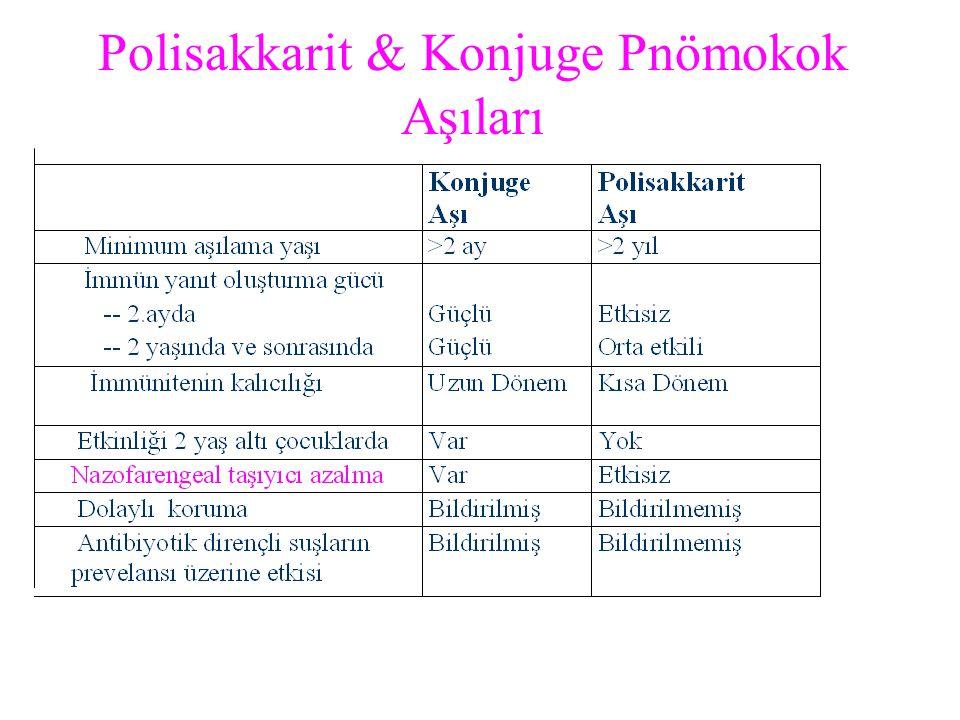 Polisakkarit & Konjuge Pnömokok Aşıları