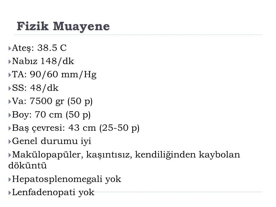 Fizik Muayene  Ateş: 38.5 C  Nabız 148/dk  TA: 90/60 mm/Hg  SS: 48/dk  Va: 7500 gr (50 p)  Boy: 70 cm (50 p)  Baş çevresi: 43 cm (25-50 p)  Ge