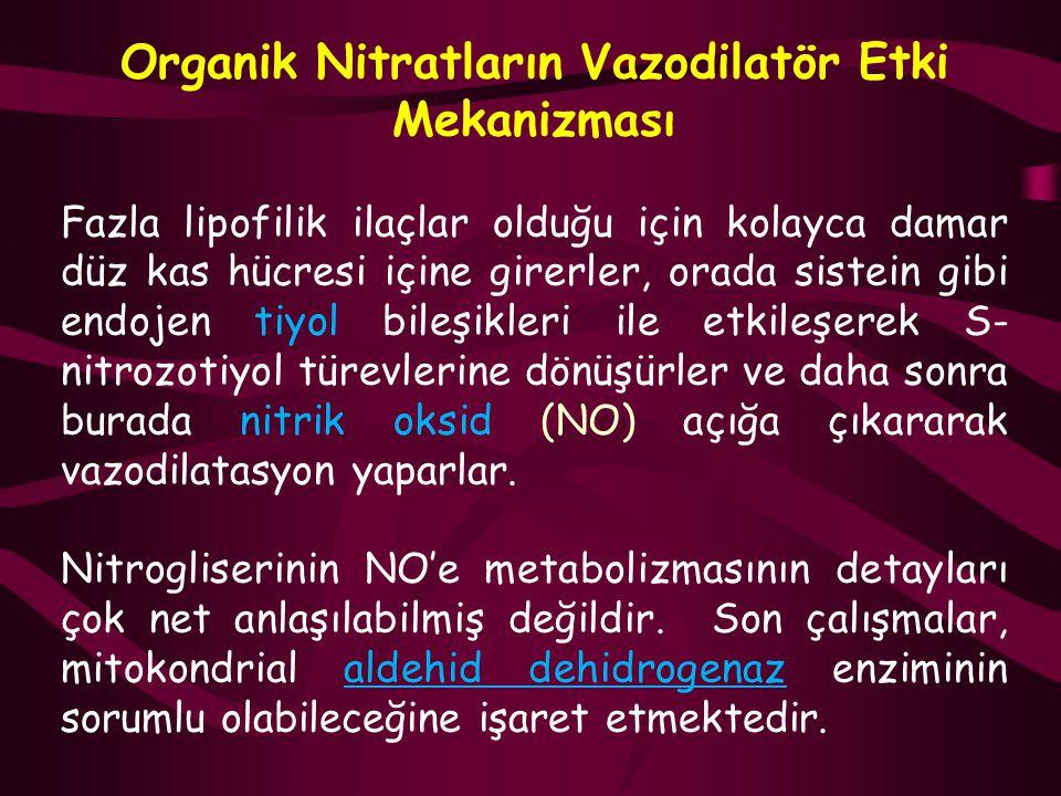 Organik Nitratların Vazodilatör Etki Mekanizması Fazla lipofilik ilaçlar olduğu için kolayca damar düz kas hücresi içine girerler, orada sistein gibi