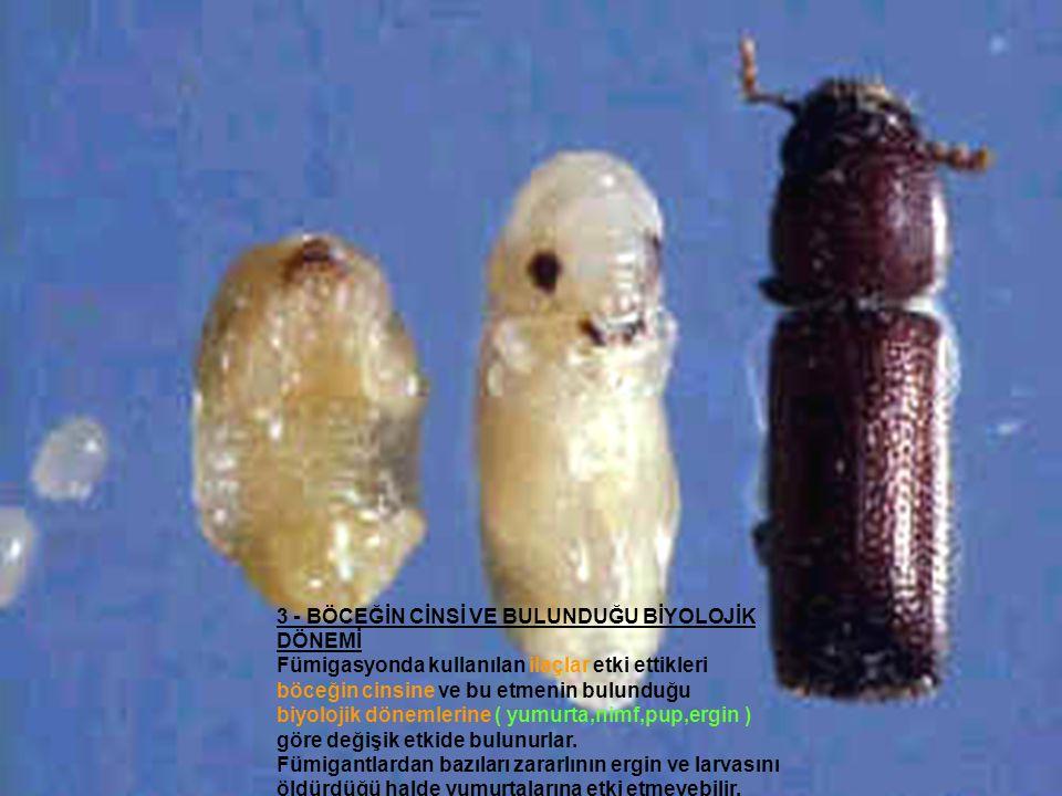 3 - BÖCEĞİN CİNSİ VE BULUNDUĞU BİYOLOJİK DÖNEMİ Fümigasyonda kullanılan ilaçlar etki ettikleri böceğin cinsine ve bu etmenin bulunduğu biyolojik dönem