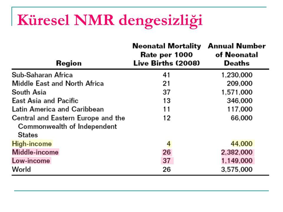 Küresel NMR dengesizliği