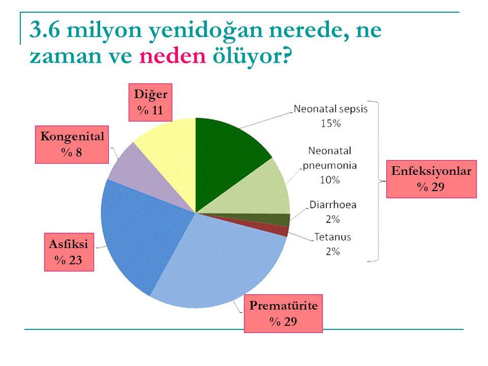 3.6 milyon yenidoğan nerede, ne zaman ve neden ölüyor? Enfeksiyonlar % 29 Prematürite % 29 Asfiksi % 23 Kongenital % 8 Diğer % 11