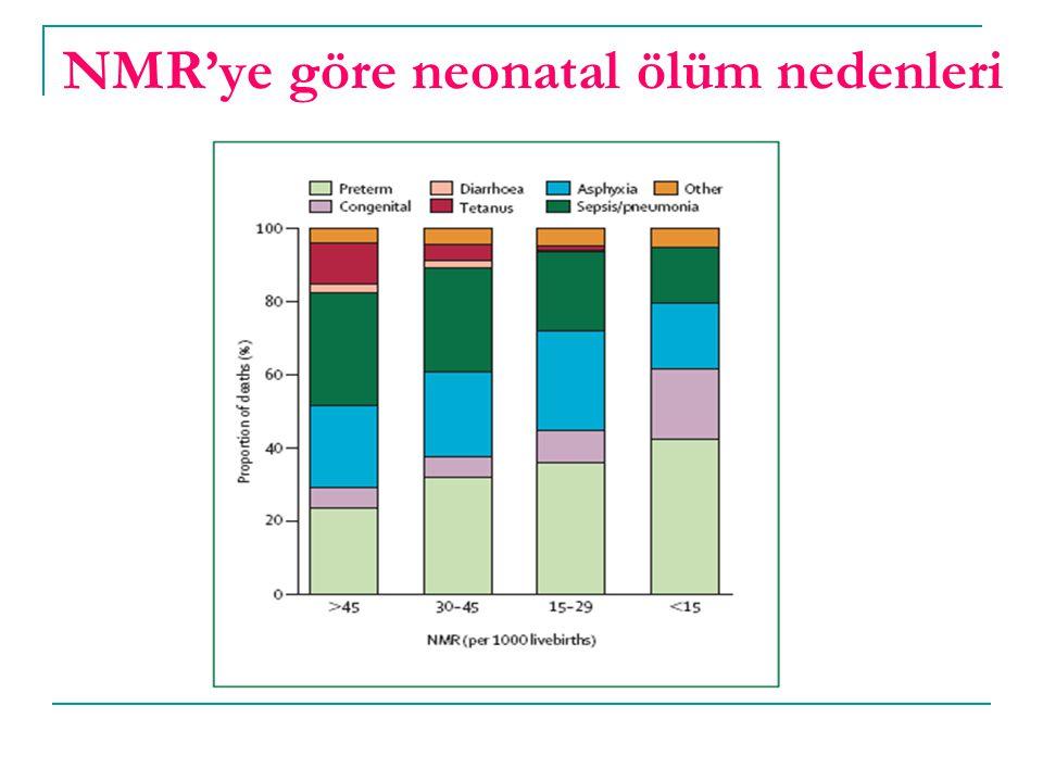 NMR'ye göre neonatal ölüm nedenleri