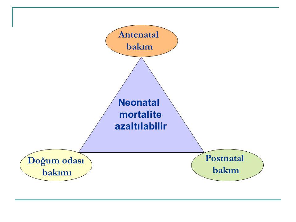 Antenatal bakım Doğum odası bakımı Postnatal bakım Neonatal mortalite azaltılabilir