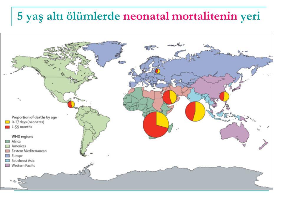 Yenidoğan canlandırmasının etkileri  Asfiksi ile ilişkili neonatal ölümler Doğum sonrası değerlendirilme, kurulama-uyarma %10 Temel yenidoğan canlandırması (sağlık kuruluşu)%30 Temel yenidoğan canlandırması (ev)%20  Preterm komplikasyonlara bağlı neonatal ölümler Doğum sonrası değerlendirilme, kurulama-uyarma %10 Temel yenidoğan canlandırması (sağlık kuruluşu)%10 Temel yenidoğan canlandırması (ev)% 5
