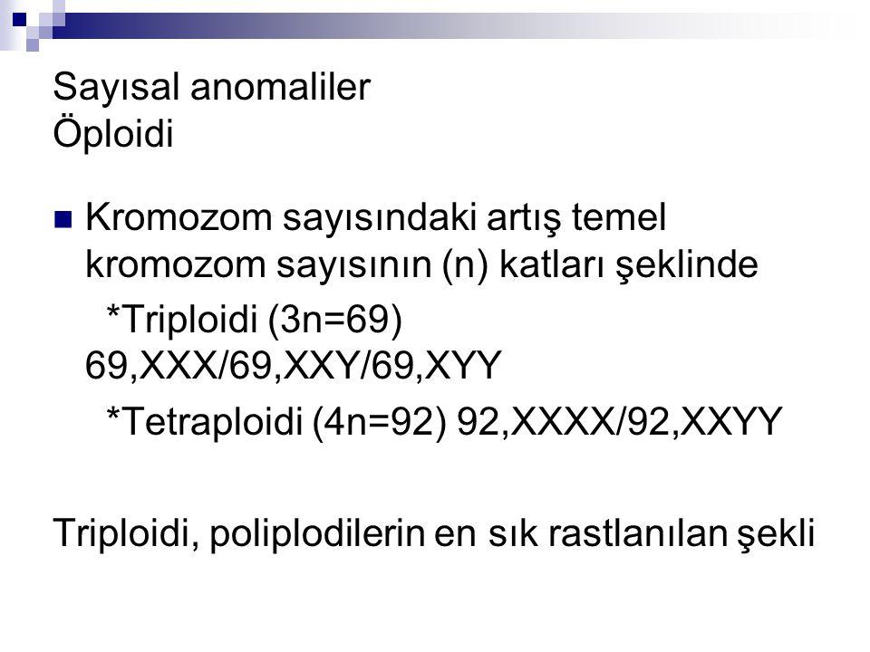Sayısal anomaliler Öploidi Kromozom sayısındaki artış temel kromozom sayısının (n) katları şeklinde *Triploidi (3n=69) 69,XXX/69,XXY/69,XYY *Tetraploi
