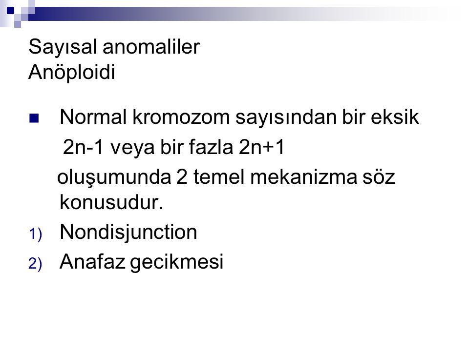 Sayısal anomaliler Anöploidi Normal kromozom sayısından bir eksik 2n-1 veya bir fazla 2n+1 oluşumunda 2 temel mekanizma söz konusudur. 1) Nondisjuncti