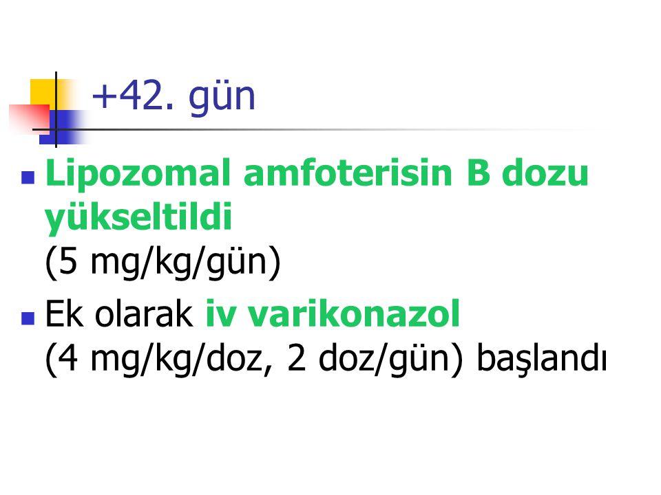 +42. gün Lipozomal amfoterisin B dozu yükseltildi (5 mg/kg/gün) Ek olarak iv varikonazol (4 mg/kg/doz, 2 doz/gün) başlandı