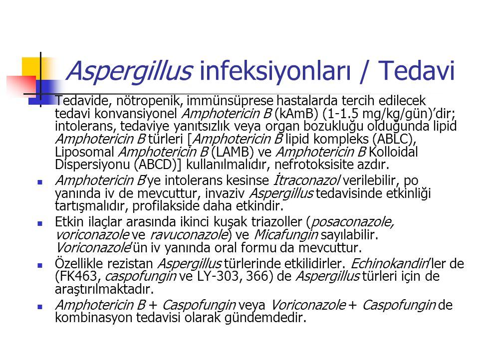 Aspergillus infeksiyonları / Tedavi Tedavide, nötropenik, immünsüprese hastalarda tercih edilecek tedavi konvansiyonel Amphotericin B (kAmB) (1-1.5 mg/kg/gün)'dir; intolerans, tedaviye yanıtsızlık veya organ bozukluğu olduğunda lipid Amphotericin B türleri [Amphotericin B lipid kompleks (ABLC), Liposomal Amphotericin B (LAMB) ve Amphotericin B Kolloidal Dispersiyonu (ABCD)] kullanılmalıdır, nefrotoksisite azdır.