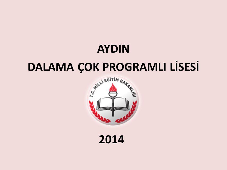 AYDIN DALAMA ÇOK PROGRAMLI LİSESİ 2014