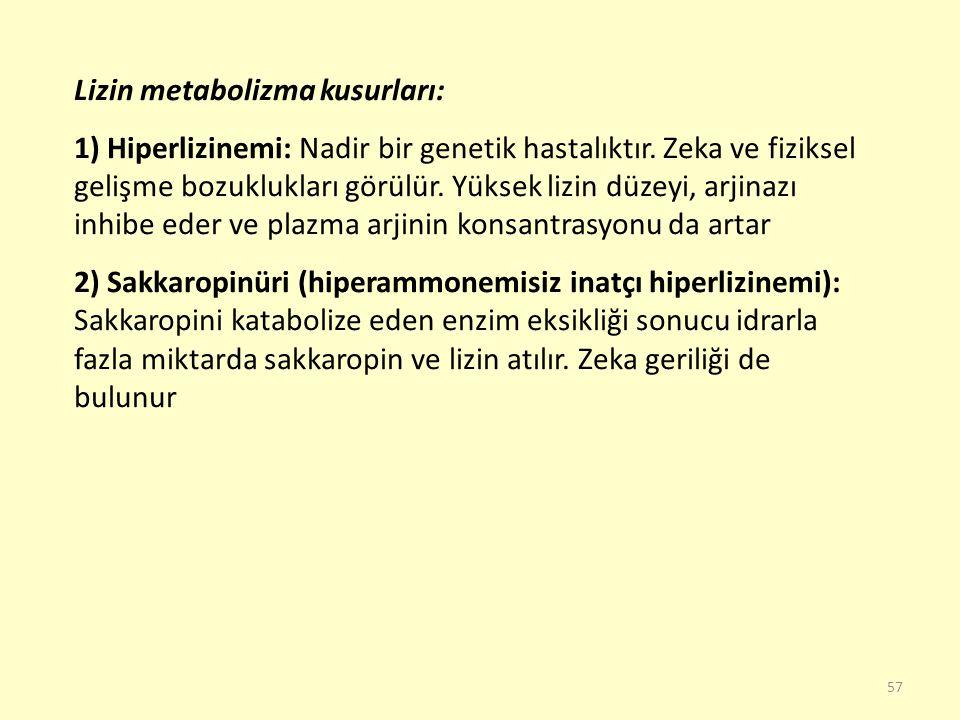 57 Lizin metabolizma kusurları: 1) Hiperlizinemi: Nadir bir genetik hastalıktır. Zeka ve fiziksel gelişme bozuklukları görülür. Yüksek lizin düzeyi, a