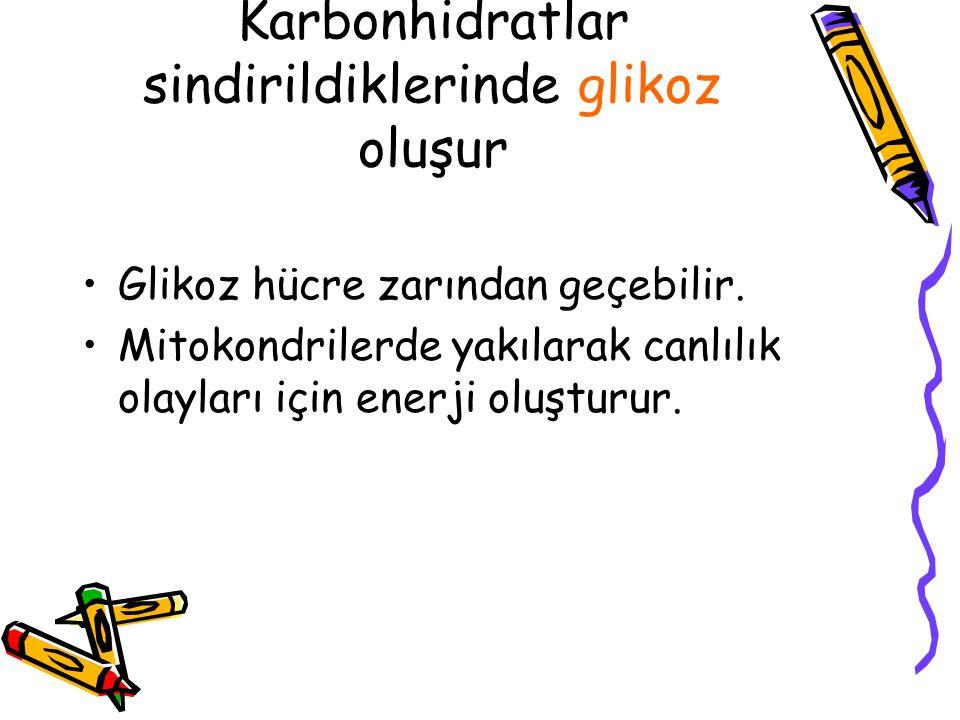 Karbonhidratlar sindirildiklerinde glikoz oluşur Glikoz hücre zarından geçebilir. Mitokondrilerde yakılarak canlılık olayları için enerji oluşturur.