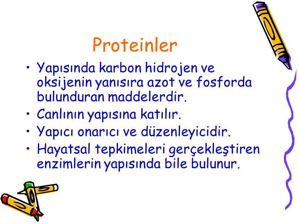 Proteinler Yapısında karbon hidrojen ve oksijenin yanısıra azot ve fosforda bulunduran maddelerdir. Canlının yapısına katılır. Yapıcı onarıcı ve düzen