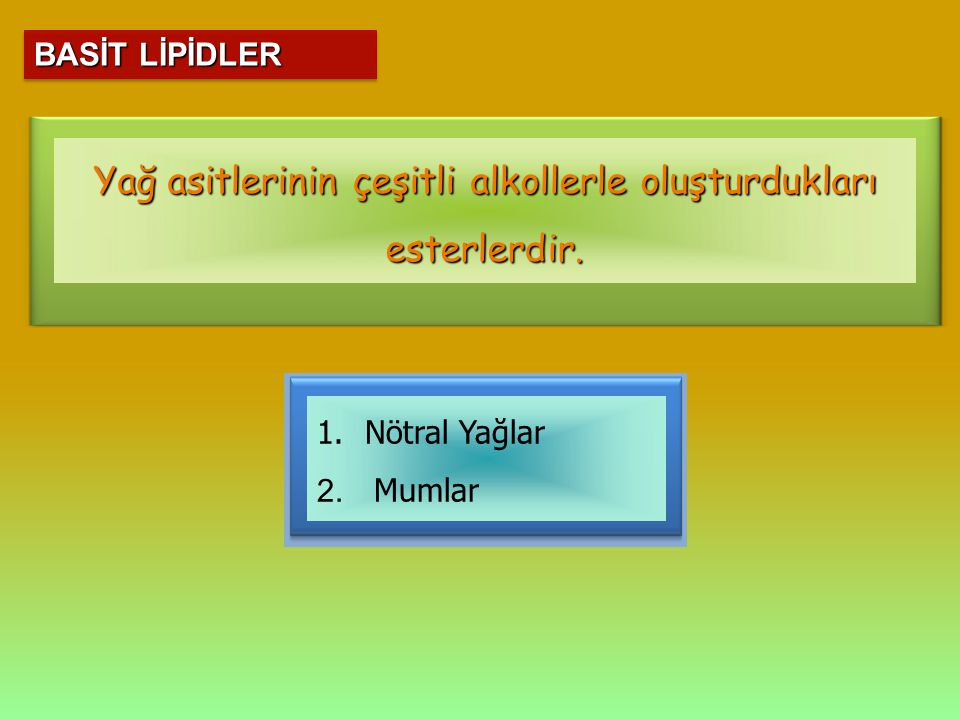 BASİT LİPİDLER 1.Nötral Yağlar 2. Mumlar Yağ asitlerinin çeşitli alkollerle oluşturdukları esterlerdir.